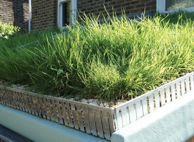green roofs london organic roofs london. Black Bedroom Furniture Sets. Home Design Ideas