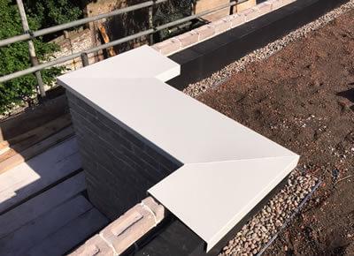 Detailing & Rainwater Goods - Organic Roofs