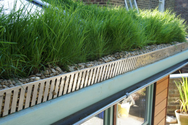 aluminium edging close up on a pitched green roof
