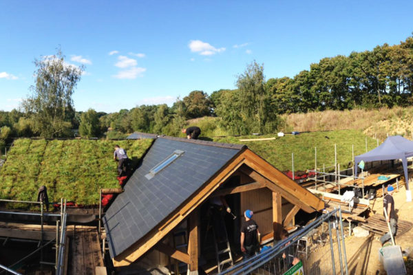 men installing a green roof showing the building requirements for green roofs