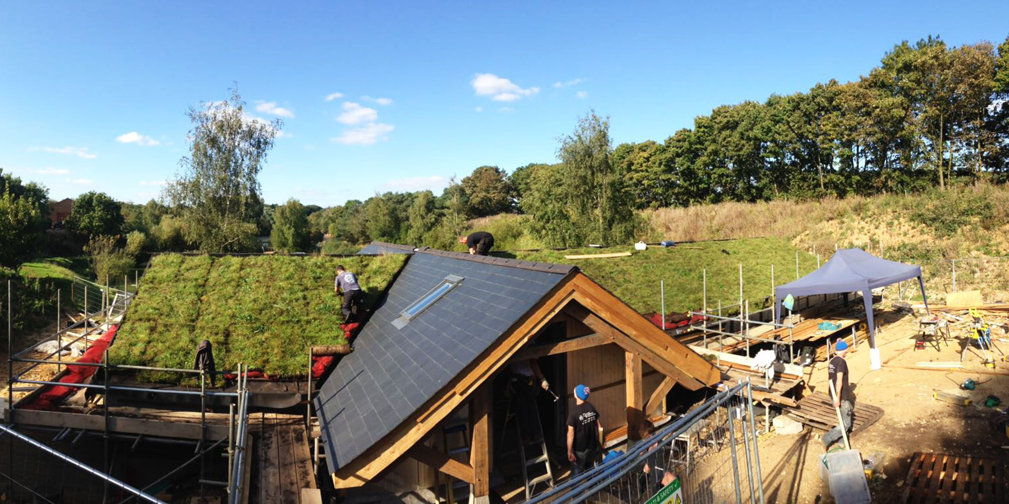 Want To Know What Sort Of Roof Can Support A Green Roof Installation