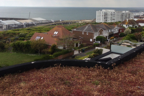 repairing and reviving a roof in Roedean Brighton by Orgnic Roofs