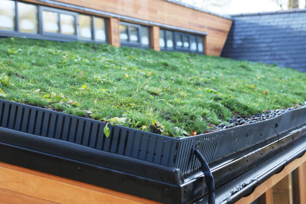 close up of aluminium edging on a piched green roof