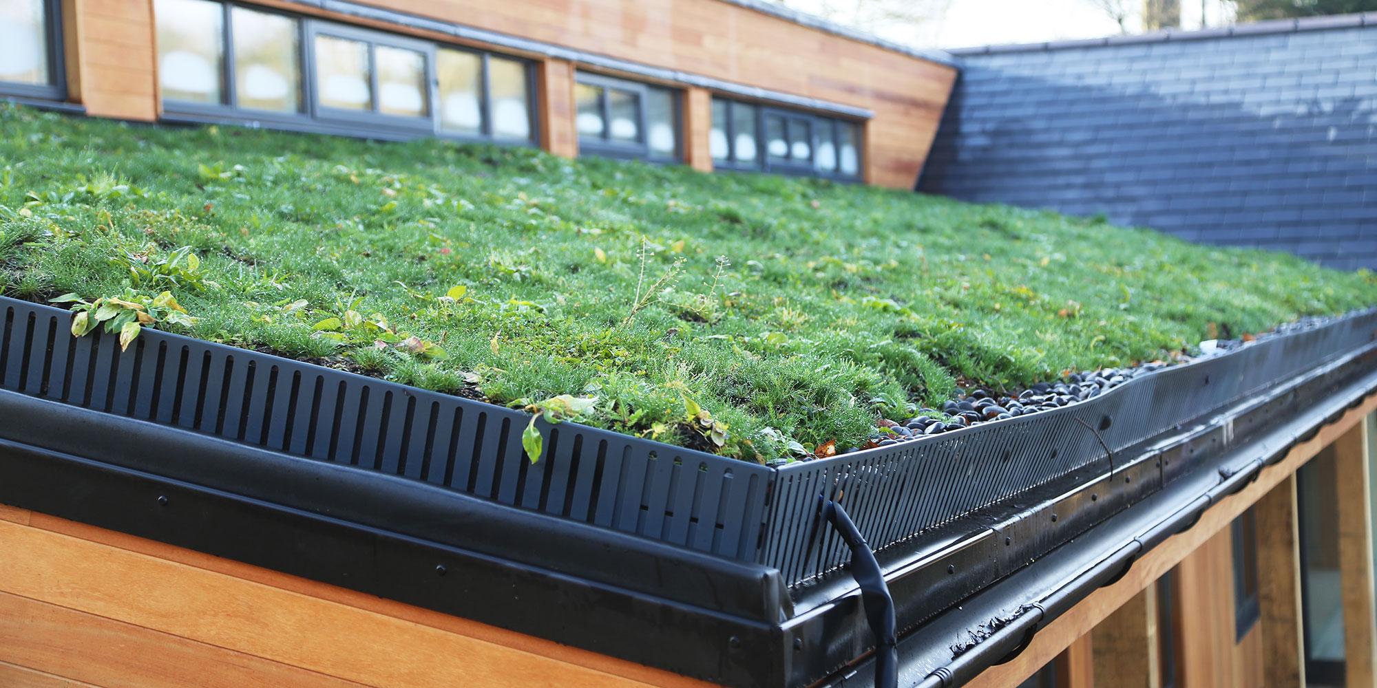 Detailing Amp Rainwater Goods Organic Roofs