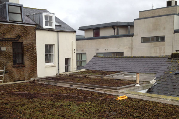 dead, flat green roof which requried maintenance