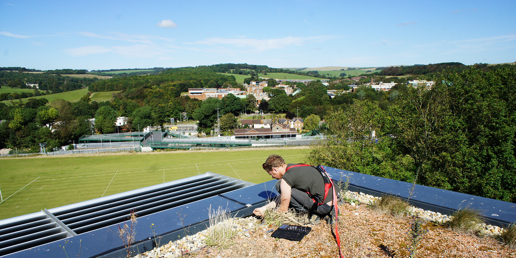 Green Roof Contract Maintenance Organic Roofs