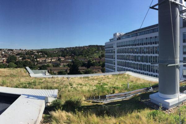 Huxley building - Brighton Unviersity green roof installation