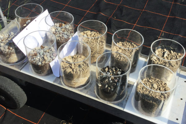 different soil types for a green roof training session