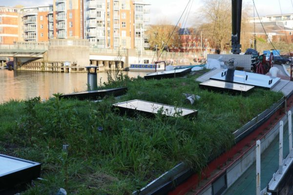 A green roof on a barge in Bristol Harbour by Organic Roofs